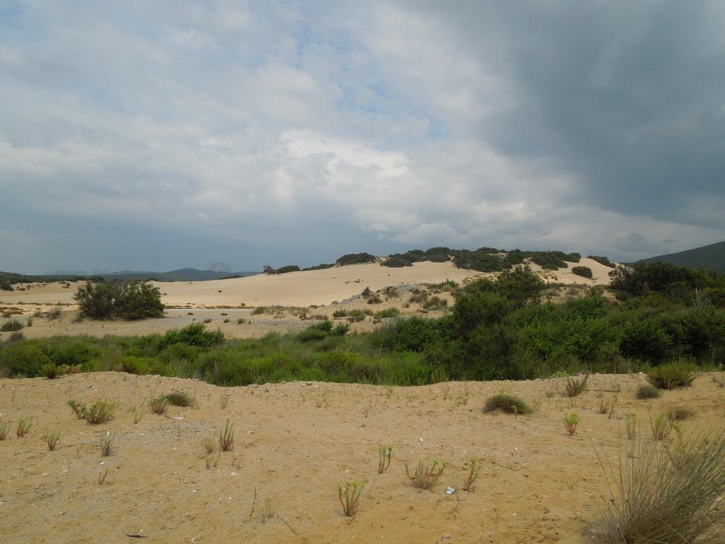 Costa Verde duny