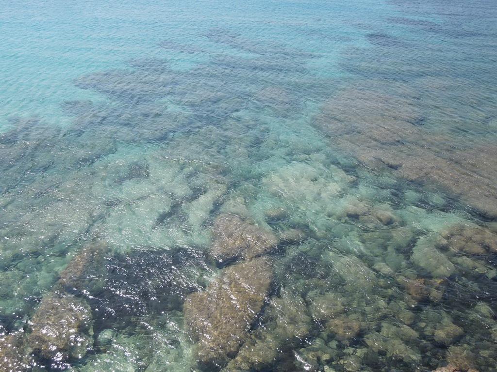 Costa del Sud more