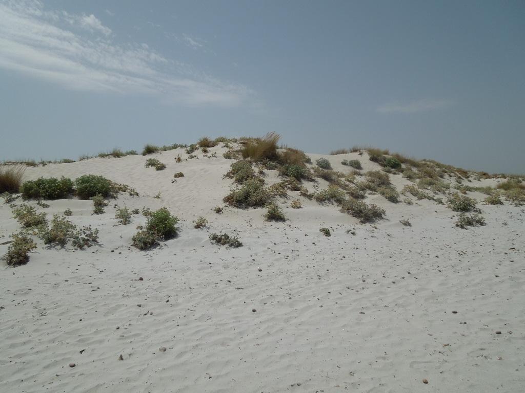 Capo Comino pláž