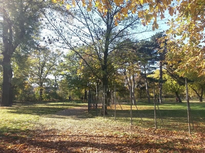 Auer-Welsbach Park