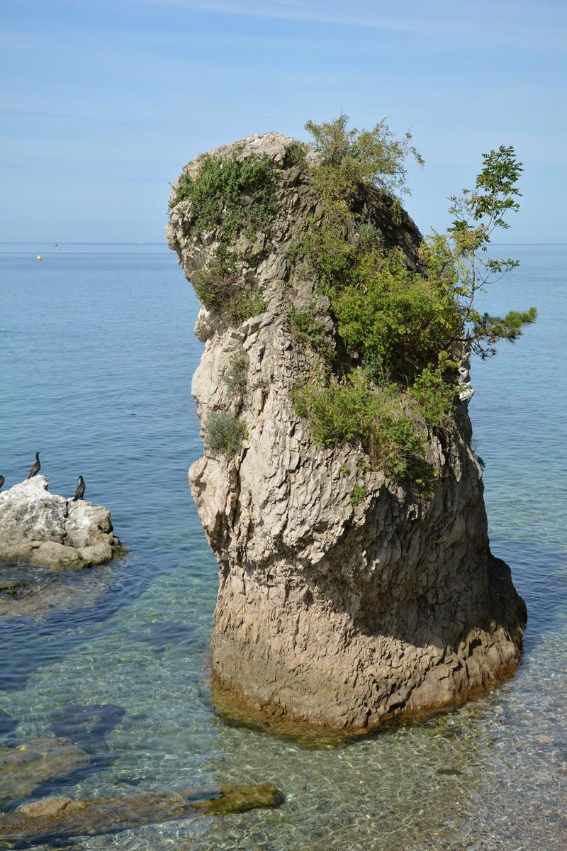 Okolie zámku Miramare