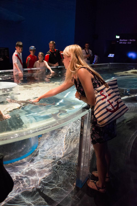 Oceánografické múzeum